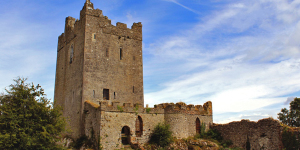 Did your Family Live in an Irish Castle?