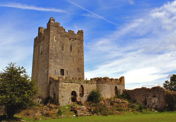 Did Your Family Live In Irish Castles