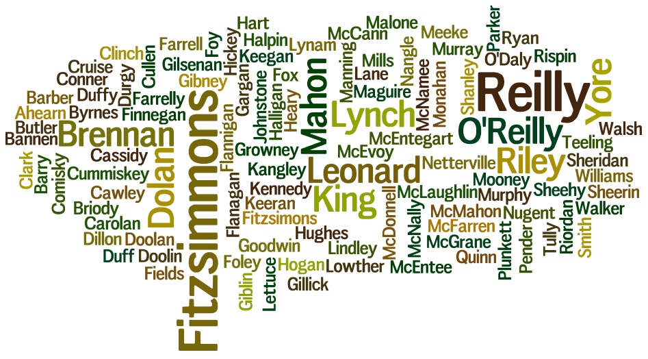 Surname Wordcloud March 2016 Meath