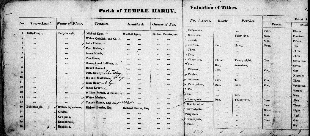 Genealogist Report – County Offaly (King's County).